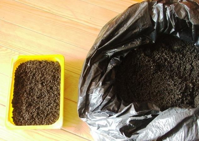 Желтая пластиковая емкость с питательным грунтом для посева семян петунии
