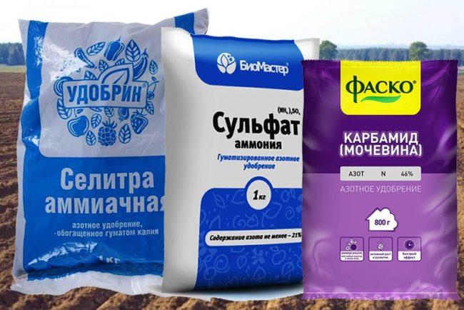Разновидности азотных удобрений для весенней подкормки садовых культур