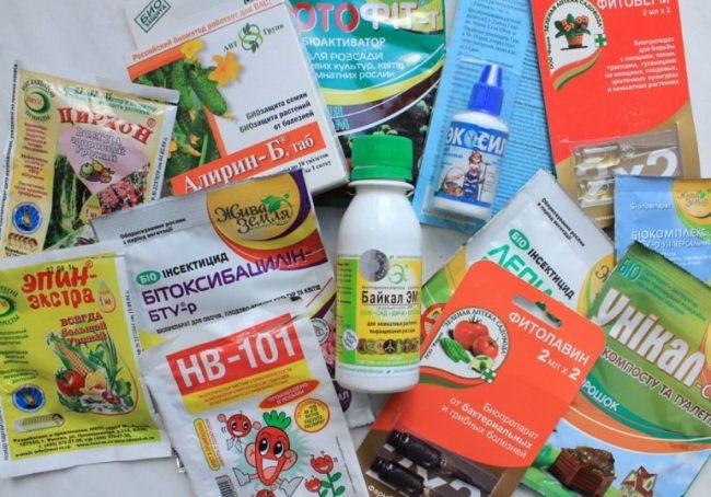 Препараты биологического происхождения для профилактики болезней растения и борьбы с вредителями