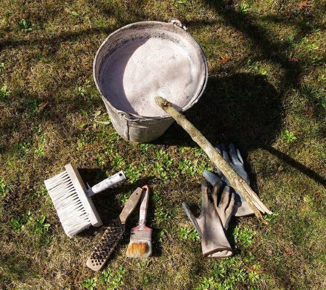 Раствор извести и инструменты для осенней побелки садовой вишни