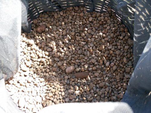 Дренажный слой из керамзита в емкости для петунии