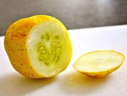 Внешний вид и разрез мякоти круглого огурца сорта Crystal apple