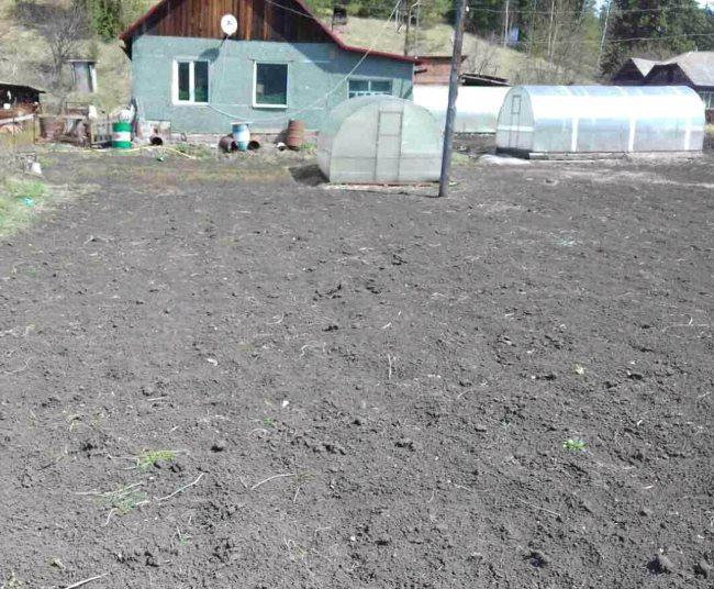 Участок на даче площадью в 10 соток под посадку картофеля