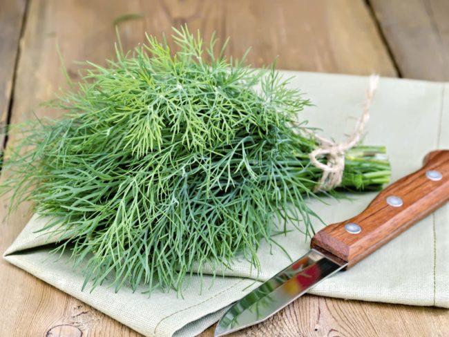 Крупный пучок зеленого укропа на столе и кухонный нож
