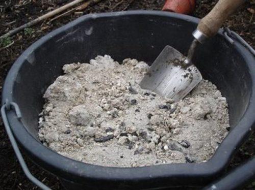 Черное ведро с древесной золой для внесение под вишню летом