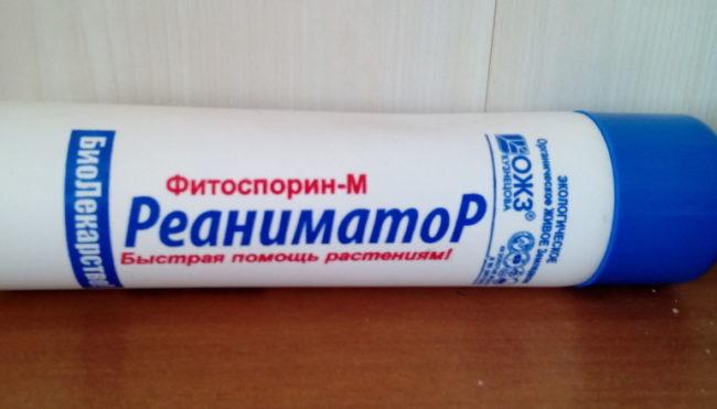 Пластиковый флакон с жидким Фитоспорином для борьбы с мучнистой росой