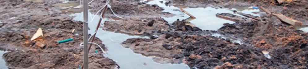 Близкое расположение грунтовых вод на садовом участке
