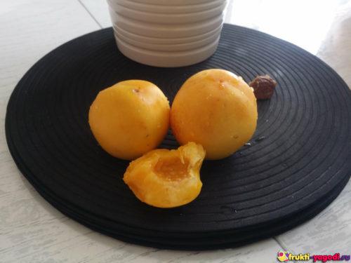 Три нектарина из урожая 2019 года на столе с мякотью
