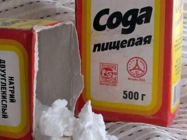 Сода пищевая для обработки смородины от тли перед плодоношением