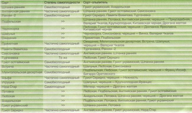 Таблица с лучшими опылителями для основных сортов вишни