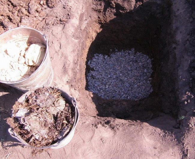 Устройство дренажа в яме под войлочную вишню на почве с нейтральной кислотностью