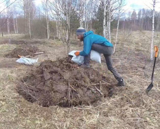 Насыпка холма для посадки вишни на участке с близко расположенными грунтовыми водами