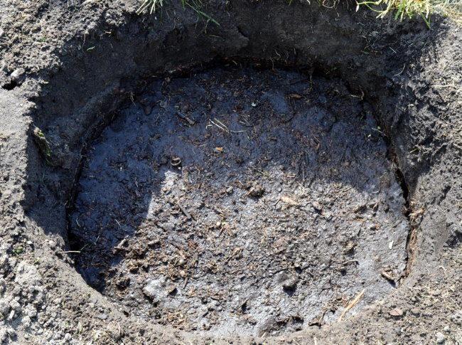 Питательный грунт в посадочной яме для вишневого саженца