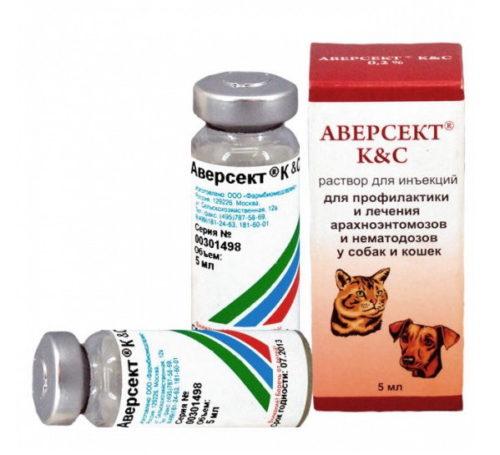 Ветеринарный препарат Аверсект в качестве эффективного средства от клещей на смородине