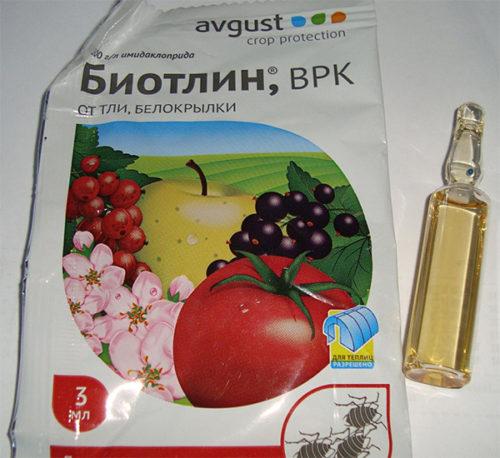 Ампула из упаковке препарата Биотлин для уничтожения тли и белокрылки на смородине