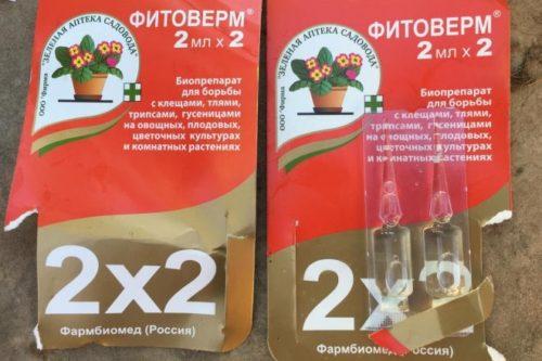 Препарат Фитоверм для обработки кустов черной смородины от тли