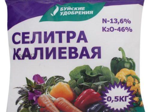 Пакет с калиевой селитрой для подкормки смородины в июне
