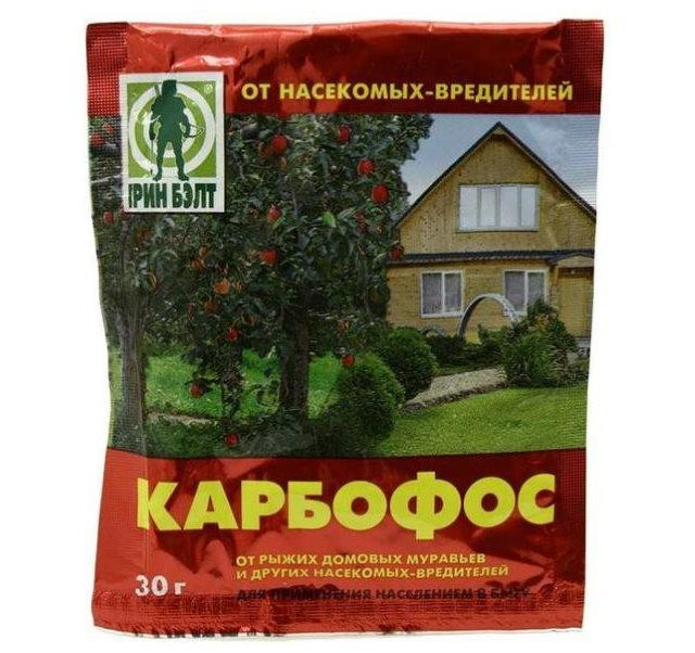 Пакетик с ампулой карбофоса от насекомых-вредителей на смородине