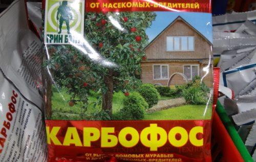 Карбофос как средство борьбы с галловой тлей на красной смородине