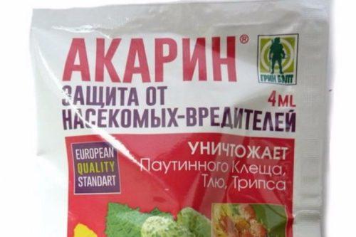 Препарат Акарин для защиты черной смородины от вредных насекомых