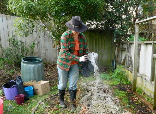 Раскисление почвы гашенной известью перед посадкой смородины