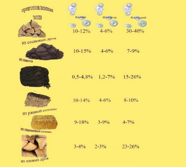 Содержание питательных элементов в золе различного происхождения