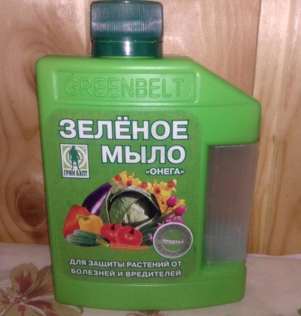 Пластиковая канистра с зеленым мылом для опрыскивания смородины от тли